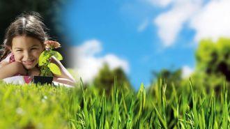 Chtěli bychom mít pěknou, zdravou, udržovanou zahradu.